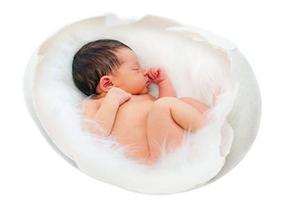 bébé dans coquilles